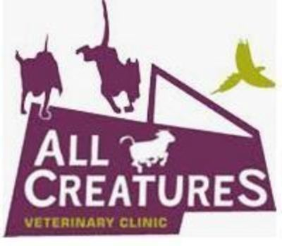 Small Animal Vet_Limavady, UK_All Creatures Veterinary Clinic