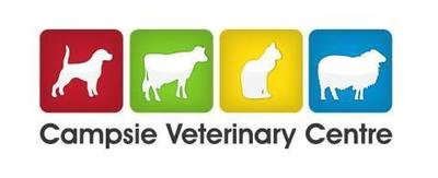 Student/Registered Veterinary Nurse_Omagh, UK_Campsie Veterinary Centre