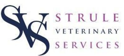 Mixed Practice Vet Surgeon_Omagh, UK_Strule Veterinary Services